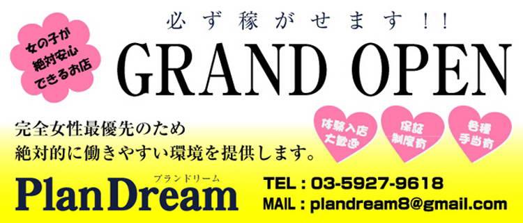デリヘル・PlanDream~プランドリーム~