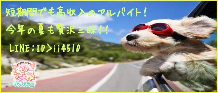 オナクラ・手コキ・風俗未経験女子専門☆添い寝リフレ大宮