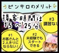 五反田・ピンクサロン・GHRの高収入求人情報 PRポイント