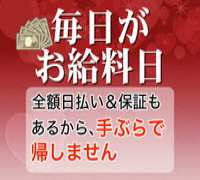 川崎・ピンクサロン・川崎溝口アラビアンナイトの高収入求人情報 PRポイント