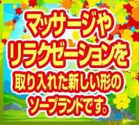 神奈川・ソープランド・La・elfの高収入求人情報 PRポイント