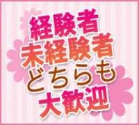 新宿・ソープランド・MAX新宿店の高収入求人情報 PRポイント