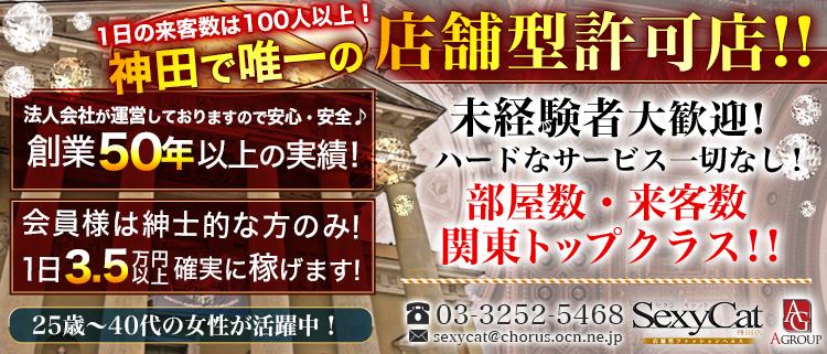 上野・秋葉原・日暮里・個室ヘルス・セクシーキャット 神田店の風俗求人情報