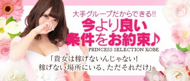 デリバリーヘルス・プリンセスセレクション神戸店