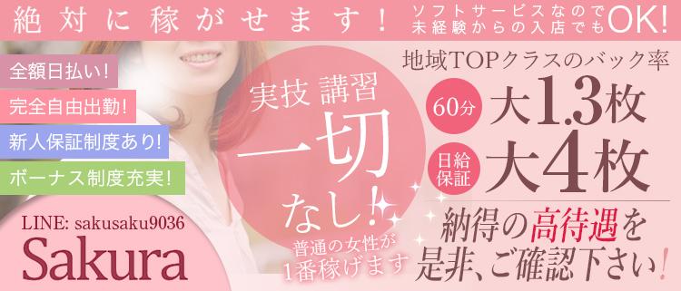 神奈川・横浜・ファッションヘルス(店舗型ヘルス)・sakura(さくら)の風俗求人情報