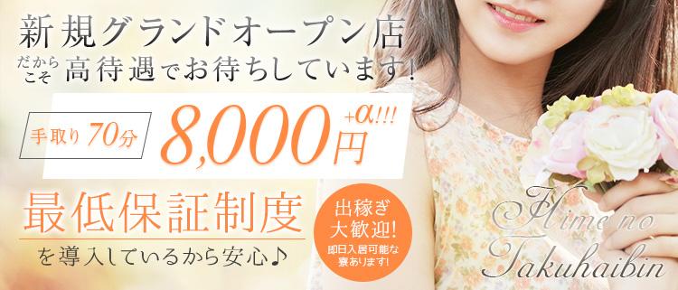 熊本・デリヘル・ヒメの宅配便の風俗求人情報