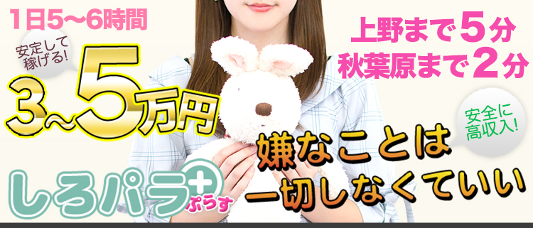 上野・秋葉原・日暮里・オナクラ・しろパラ+(プラス)の風俗求人情報