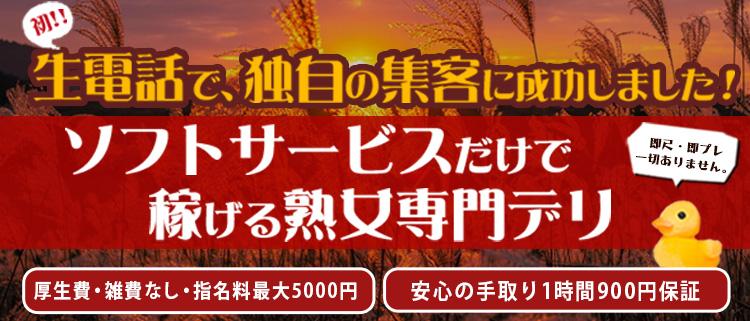 デリヘル・熟年カップル五反田~生電話からの営み~