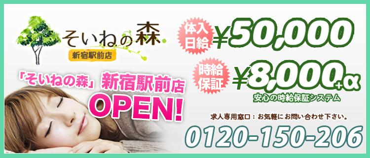 添い寝専門店の風俗求人 そいねの森新宿駅前店 - 添い寝するだけの簡単お仕事!体験入店で最大5万円保証します!