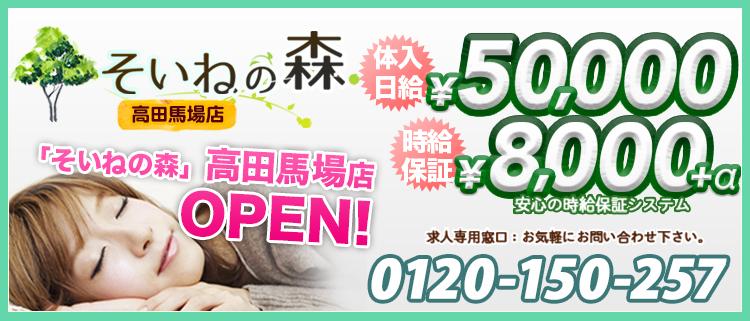 新宿・添い寝専門店・そいねの森高田馬場店の風俗求人情報