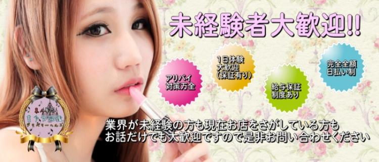 デリヘル・素人専門 美少女図鑑