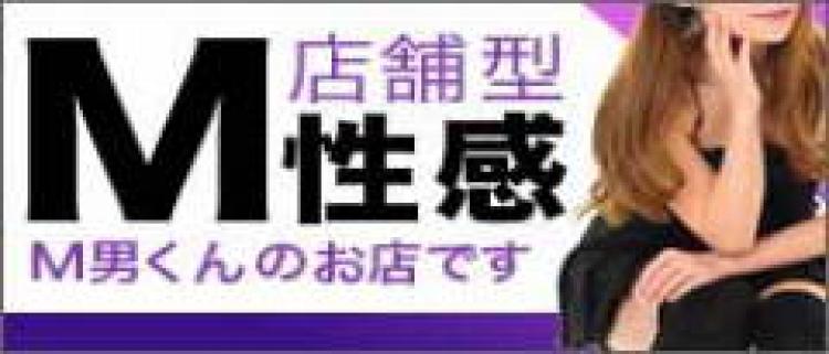 ファッションヘルス(店舗型ヘルス)・ハレ系横浜 イッツブーリー