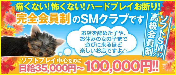 SMクラブ・M性感・鶯谷マスターズクラブ