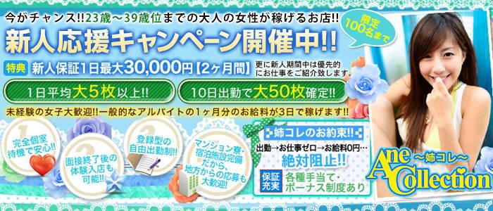 ホテル型ヘルス・Ane Collection (姉コレ)