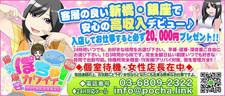 デリバリーヘルス・新橋デリヘルぽちゃカワイイ!