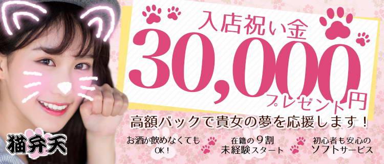 京都・コンパニオン・猫弁天の風俗求人情報