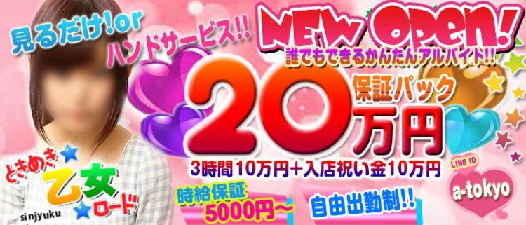 新宿・オナクラ・手コキ・ときめき☆乙女☆ロードの風俗求人情報