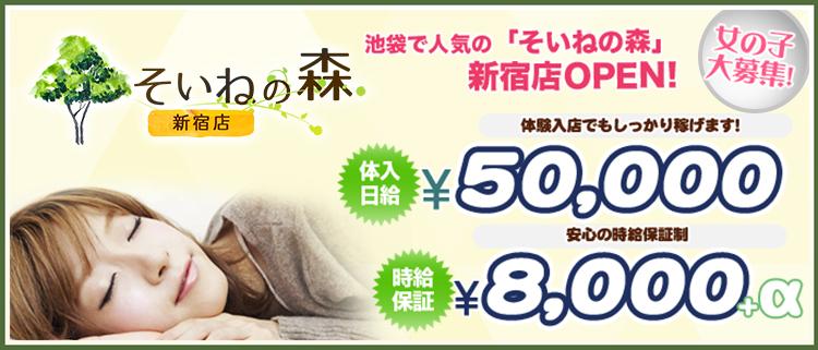 添い寝の風俗求人 そいねの森新宿店 - 添い寝するだけの超簡単なお仕事!体験入店だけでも最大50,000円保証します!