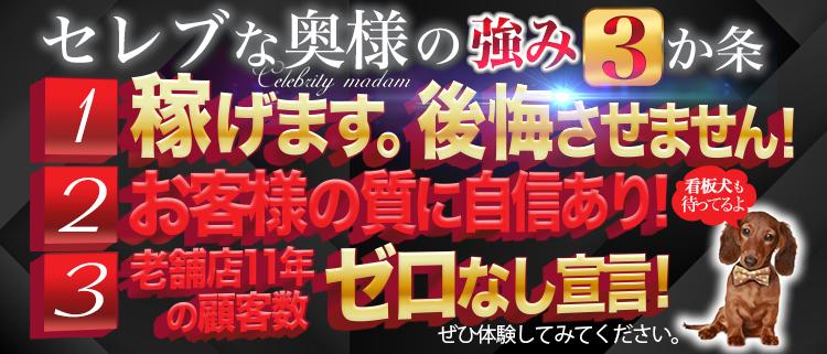 神戸 三宮・デリヘル・セレブな奥様の風俗求人情報