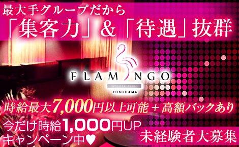 セクシーキャバクラ・横浜FLAMINGO(ヨコハマ フラミンゴ)
