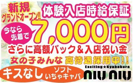 ・niu niu(ニューニュー)