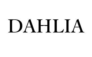 ・DAHLIA(ダリア)