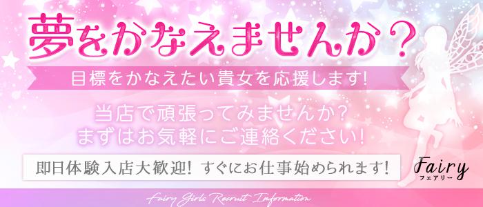 その他の業種・Fairy (フェアリー)