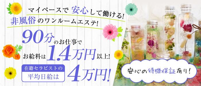 メンズエステ(非風俗)・plaisir~プレジール~ 西新宿店