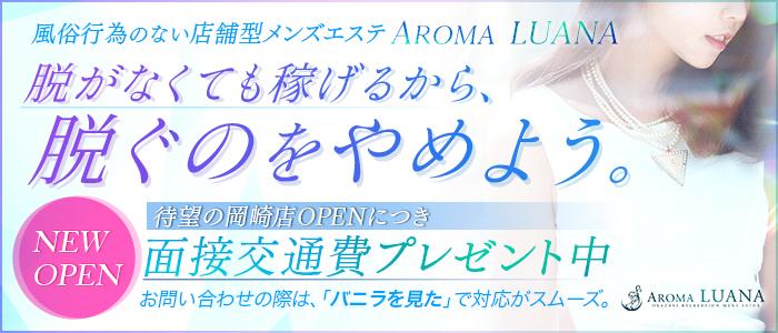 メンズエステ(非風俗)・Aroma Luana岡崎店