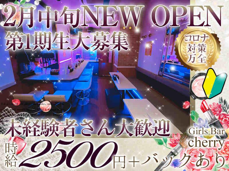 ガールズバー・Girls Bar cherry(ガールズバーチェリー)
