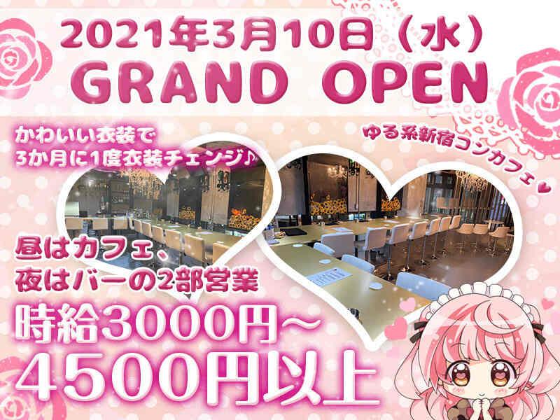 ガールズバー・Girls Cafe Spiral D Tokyo