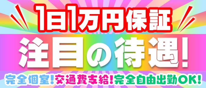 デリヘル・ポチャX(最高肉尻美ギャル専門店)