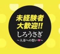 宮崎・デリバリーヘルス・しろうさぎの高収入求人情報 PRポイント
