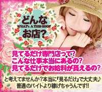 堺 天王寺・オナクラ・キューティーツイートの高収入求人情報 PRポイント
