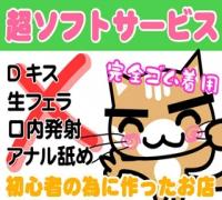 神奈川・横浜・イメージクラブ・ちぇっくいん横浜女学園の高収入求人情報 PRポイント