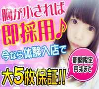 新宿・ソフトヘルスコンパニオン・貧乳パラダイス