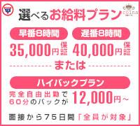 吉原・ファッションヘルス・YESグループヨコハマ eroina