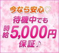 新橋・ホテル型オナクラ(手コキ)・華爛漫の高収入求人情報 PRポイント