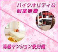 新橋・ホテル型オナクラ(手コキ)・華爛漫