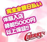 池袋・セクシーキャバクラ・Cherry ~チェリー~の高収入求人情報 PRポイント