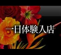 熊本・デリヘル・JPRグループ 高級人妻専門店 乱の高収入求人情報 PRポイント