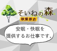 上野・その他の業種・そいねの森 秋葉原店の高収入求人情報 PRポイント